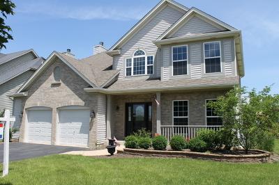 Bartlett Single Family Home For Sale: 253 Fieldcrest Drive