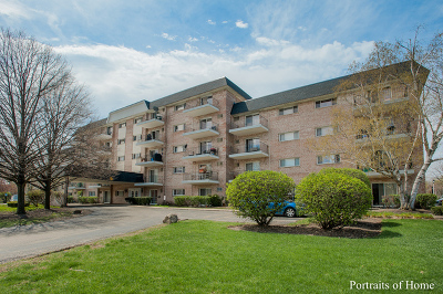 Wheaton Condo/Townhouse New: 1000 South Lorraine Road #405
