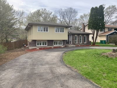 Winfield Single Family Home For Sale: 0s750 Cleveland Street