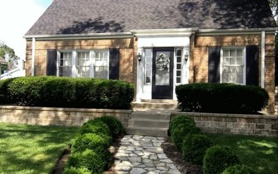 Elmhurst Single Family Home For Sale: 375 North Emroy Avenue