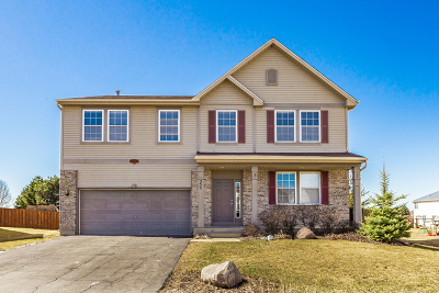 Pingree Grove Single Family Home New: 253 Brookhaven Trail