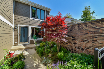 Wheaton Condo/Townhouse New: 2123 Fox Run