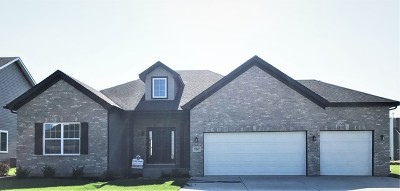 Plainfield Single Family Home For Sale: 16415 Mueller Circle