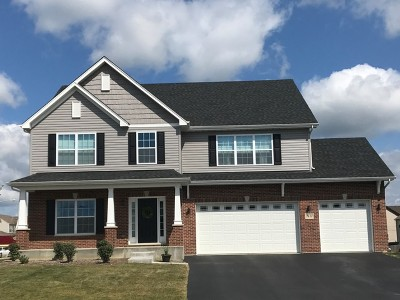 Plainfield Single Family Home For Sale: 16413 Mueller Circle
