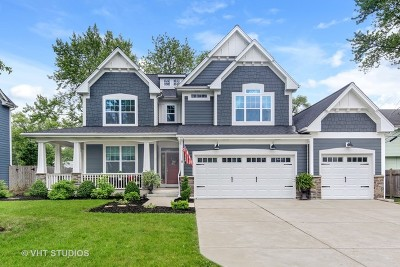 Downers Grove IL Single Family Home New: $700,000