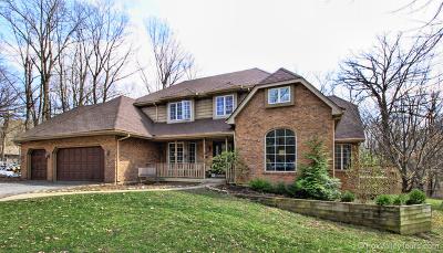 Oswego Single Family Home New: 30 Crestview Drive