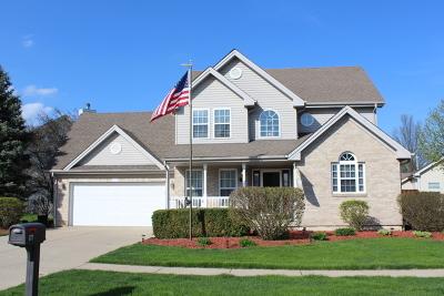South Elgin Single Family Home New: 177 West Lynn Street