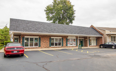 New Lenox Commercial For Sale: 329 West Maple Street