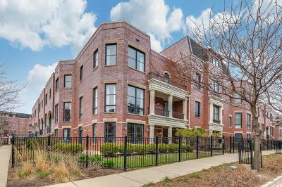 Condo/Townhouse New: 2630 North Hermitage Avenue