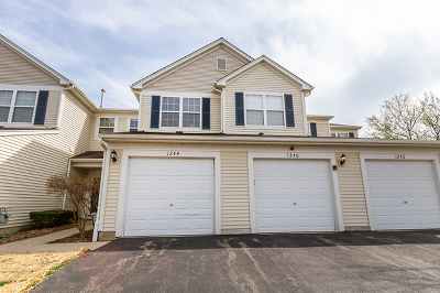 Carpentersville Condo/Townhouse New: 1244 Brookdale Drive #1244