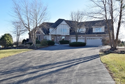 Elburn Single Family Home For Sale: 39w805 Fabyan Parkway