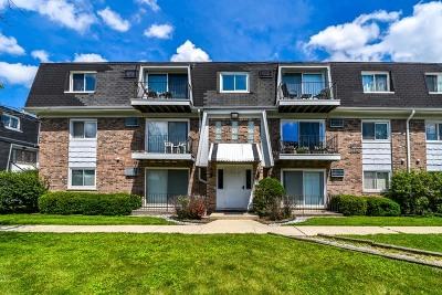 Chicago Ridge Condo/Townhouse For Sale: 10320 South Ridgeland Avenue #301