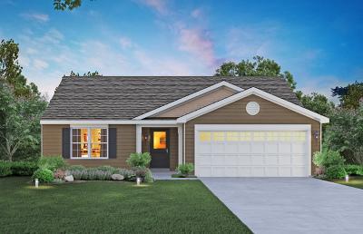 Woodstock Single Family Home New: 1312 Redtail Lane