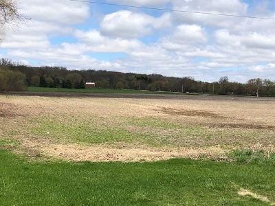 Elburn Residential Lots & Land For Sale: 41 W 250 Rte 38 Road