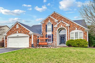 Crystal Lake Single Family Home New: 1426 Tanglewood Drive