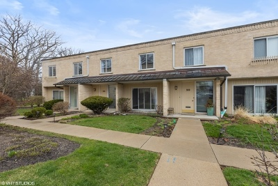 Glencoe Condo/Townhouse New: 158 Green Bay Road