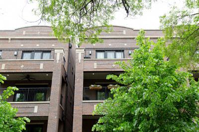 Condo/Townhouse New: 3950 North Hoyne Avenue #2S