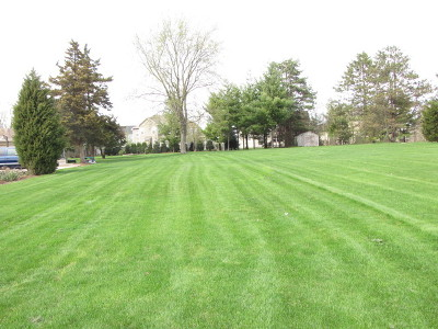 Bartlett Residential Lots & Land New: 28w450 Army Trail Road