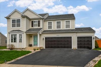 Bourbonnais Single Family Home For Sale: 2223 Crescent