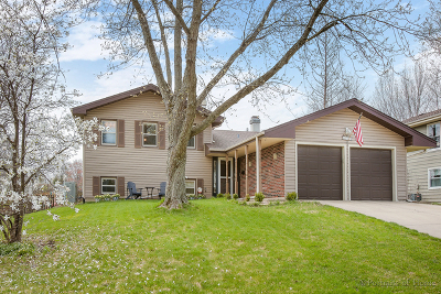 Glen Ellyn Single Family Home New: 21w705 Huntington Road