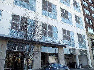 Condo/Townhouse New: 701 South Wells Street #802