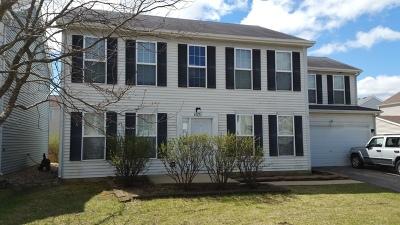 Aurora Single Family Home New: 1671 Hickory Park Lane