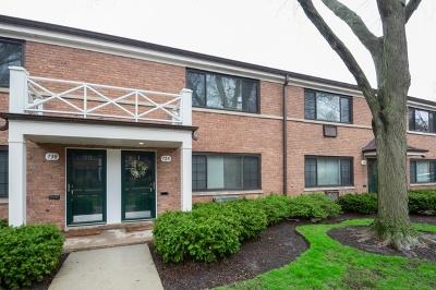 Evanston Condo/Townhouse New: 728 Dodge Avenue