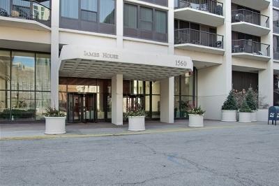 Condo/Townhouse New: 1560 North Sandburg Terrace #3202