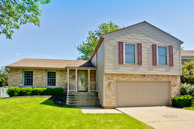 Schaumburg Single Family Home For Sale: 2193 Hitching Post Lane