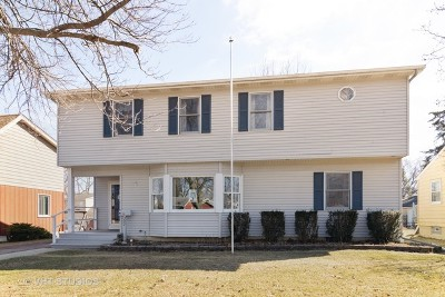 Bartlett Single Family Home For Sale: 227 North Berteau Avenue