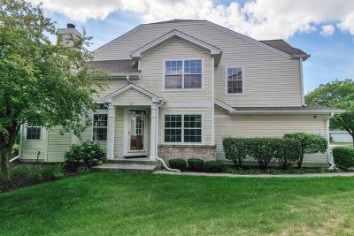 Naperville IL Condo/Townhouse New: $294,900