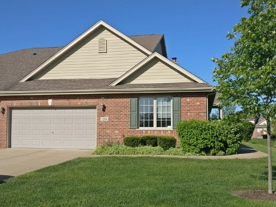 Mokena Condo/Townhouse New: 12608 Royal Gorge Court