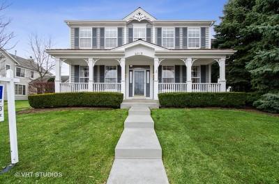 Glenview Single Family Home New: 2315 Chestnut Avenue