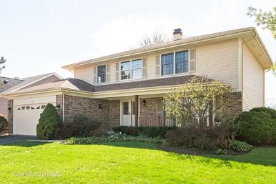 Palatine Single Family Home New: 866 South Parkplace Drive