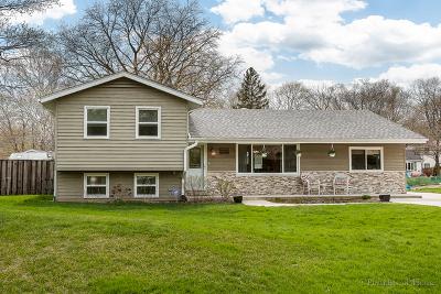 Glen Ellyn Single Family Home New: 3s050 Sequoia Drive