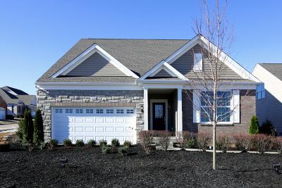 Naperville Single Family Home For Sale: 4143 Lobo Lane