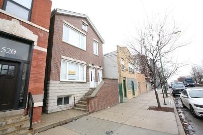Multi Family Home New: 522 North Ashland Avenue