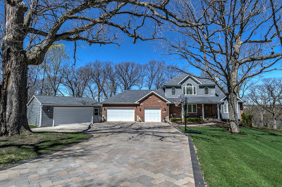 South Elgin Single Family Home For Sale: 1698 Raymond Street