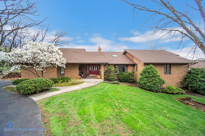 Lockport Single Family Home Contingent: 16159 South Pin Oak Court