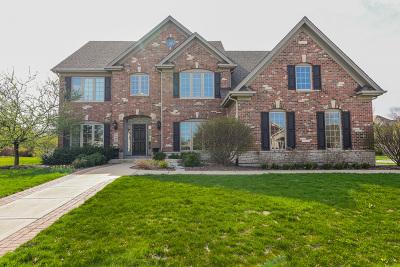 Batavia Single Family Home For Sale: 1505 Naperville Lane