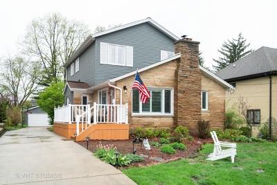 Glen Ellyn Single Family Home For Sale: 308 Grandview Avenue