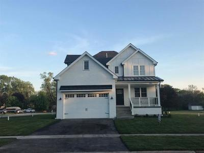 Mokena Single Family Home New: 10921 Bryant Road