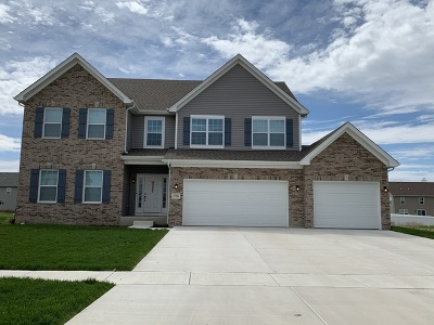 Plainfield Single Family Home For Sale: 16411 Mueller Circle