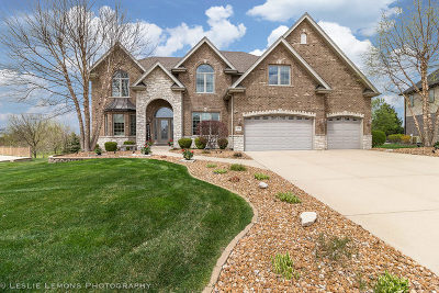 Mokena IL Single Family Home New: $649,900