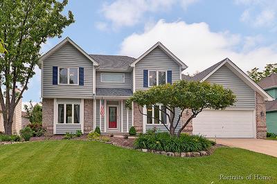Oswego Single Family Home New: 482 Waubonsee Circle