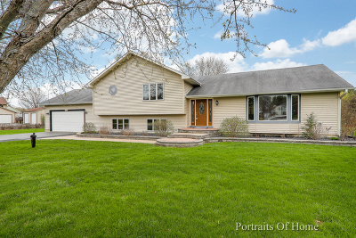 Crystal Lake Single Family Home New: 6219 Coachlight Road