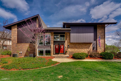 Downers Grove Single Family Home New: 580 Millbrook Drive