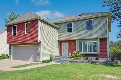 Lisle Single Family Home For Sale: 6600 Fernwood Drive