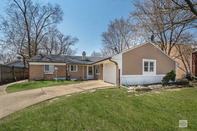 Du Page County Single Family Home New: 1346 Hartford Street