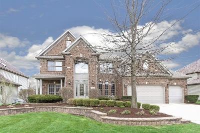 Naperville Single Family Home New: 3627 Schillinger Court